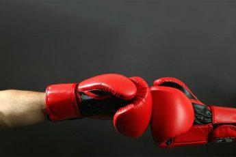 ТОП боксеров
