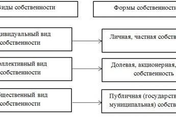 Форма собственности: понятие, классификация, виды